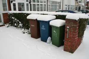 Garden waste collection in winter