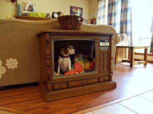 TV Pet Bed