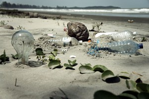 800px-Water_Pollution_with_Trash_Disposal_of_Waste_at_the_Garbage_Beach