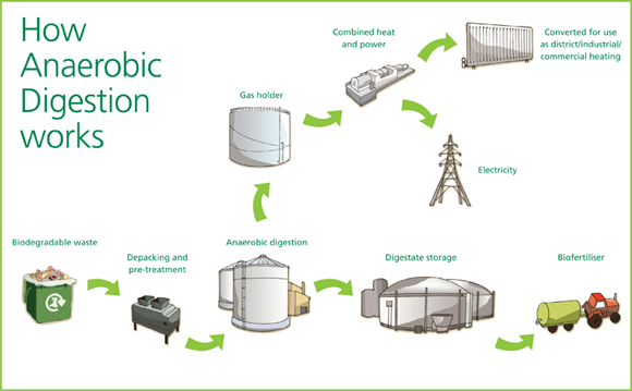 uk food waste collection and disposal options rubbish please bacteria cell label