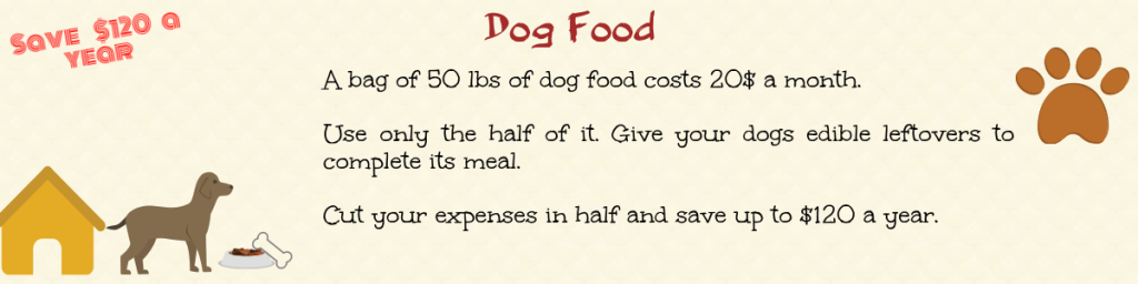 recycle food waste for money and cut down on dog food
