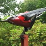 Ptolemy_Scrap Bird